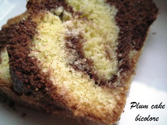 Plum cake bicolore 3